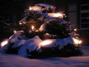 Karácsonyi hangulat: igazi fenyő kell, vagy a műfenyő is jó?